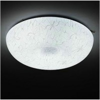 Simple big round ceiling lamp of Large size