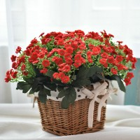 Artificial Flowers with rattan vase Style 7