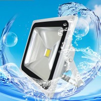LED projection light for outdoor lamp